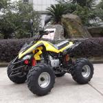 Distributor Information - Sport Model ATV