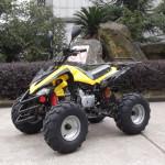 Sport ATV Series